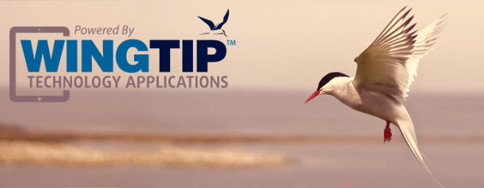 Wingtip Applications